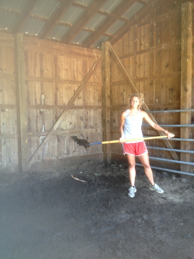 Cleaning the horse stalls, yum.